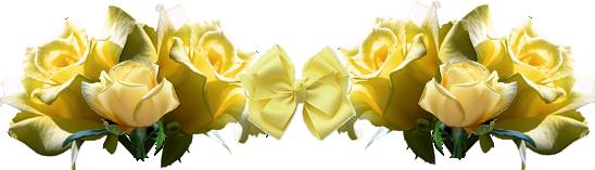 Bannière Décoration - Roses jaunes