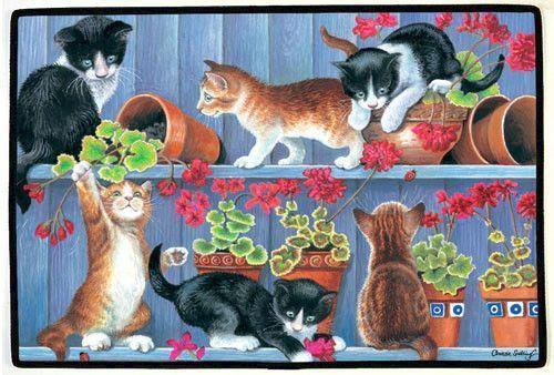 Animaux - Chats, pots de fleurs