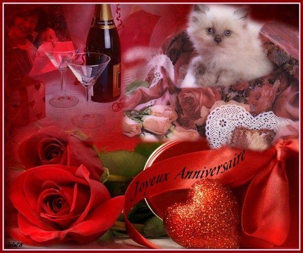 Joyeux Anniversaire - Chaton, roses rouges, vin