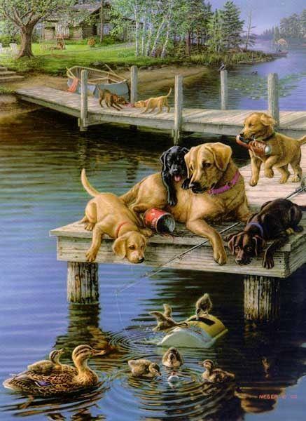 Animaux - Chiens sur quai du lac
