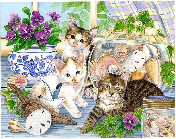 Animaux - Chats et coquillages