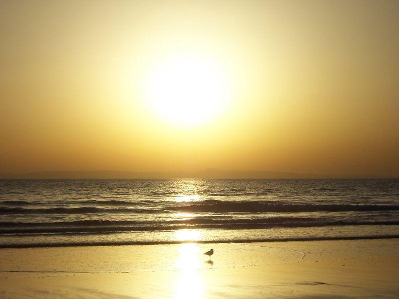 Paysage Ciel - Coucher du soleil, fond beige jaune
