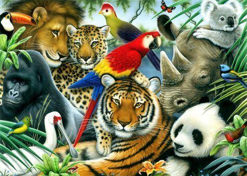 Les gorilles et les tigres en voie d'extinction, selon la FAO